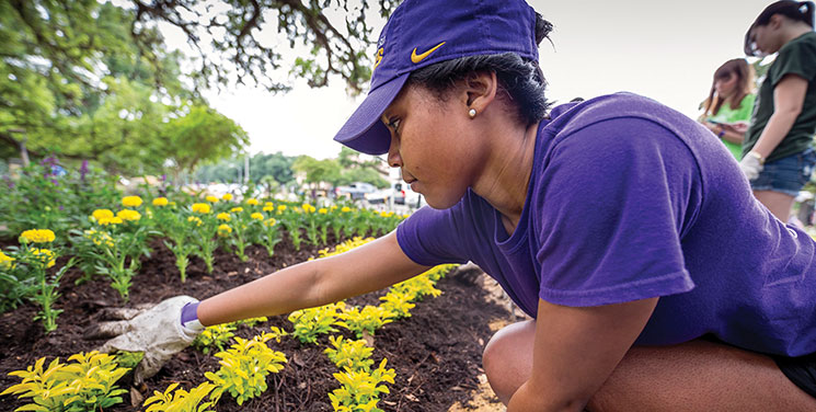 A student plants flowers during Spring Greening Day 2015. Photo by Eddy Perez